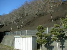 六甲砂防斜面対策事業 森地区